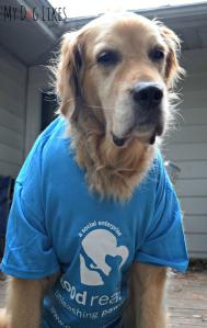 Handsome Harley showing his support!