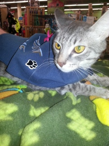 """Beautiful & Sweet Icicle says """"I support autism awareness!"""""""