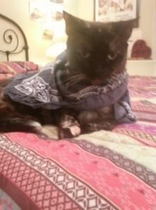 Pretty Kiki showing her support!